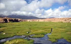 Картинка поле, пейзаж, горы, природа
