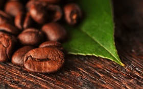 Картинка зерна, coffee, beans, кофе, macro, leaf, лист