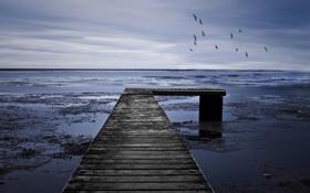 Обои мрачно, мост, море