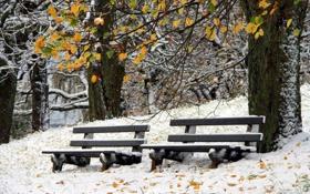 Картинка зима, снег, скамейки