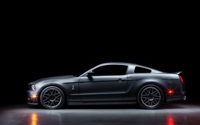 Картинка Mustang, Ford, Shelby, GT500, silvery, profile