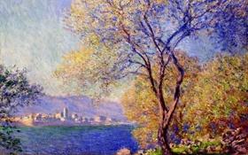 Картинка импрессионизм, пейзаж, Клод Моне, картина, дерево