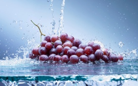 Картинка стекло, вода, брызги, ягоды, виноград, гроздь