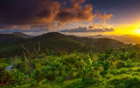 Обои trees, cloud, hills, sunrise, thailand