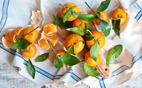 Обои солнечные мандарины, салфетка, листики
