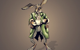 Обои заяц, кролик, чашка, пиджак, алиса в стране чудес