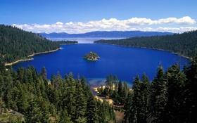Обои лес, пейзаж, природа, озеро, остров, Калифорния, Озеро Тахо
