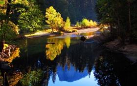 Обои осень, лес, деревья, горы, отражение, ожеро