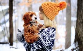 Обои зима, девушка, животное, шапка, собака