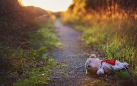 Обои дорога, настроение, игрушка, мишка