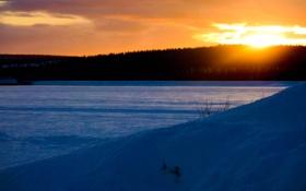 Обои зима, лес, снег, закат, природа, вечер