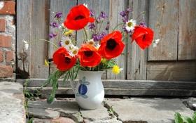 Картинка цветы, обои, забор, ваза
