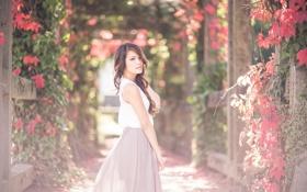 Картинка лето, девушка, цветы, сад