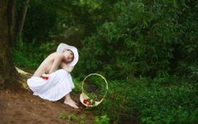 Картинка лес, девушка, цветы, природа