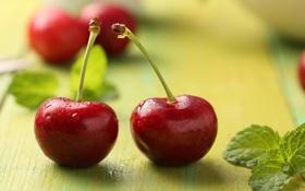 Обои макро, ягоды, пара, красные, мята, вишни