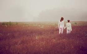 Обои поле, трава, девушка, туман, девушки, настроение, утро