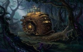 Картинка лес, ночь, огни, дом, улитка, раковина, арт
