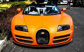 Картинка veyron, bugatti, orange