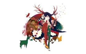 Картинка животные, Девушка, стрекоза, коса, лорнет
