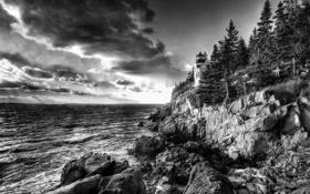 Обои деревья, пейзаж, океан, скалы, маяк, черно-белое фото