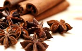 Картинка корица, пряности, cinnamon, анис, anise, spices