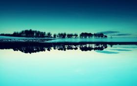 Обои деревья, отражение, Синий