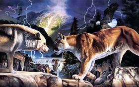 Картинка река, камни, молния, волк, арт, орёл, пума