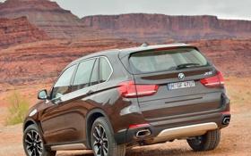 Картинка авто, BMW, внедорожник, задок, xDrive50i