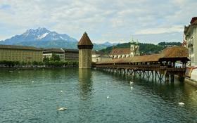 Обои небо, горы, река, дома, Швейцария, галерея, лебеди