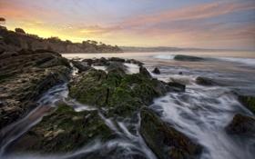 Картинка море, закат, камни, скалы, мох, прибой