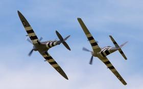 Обои истребители, полёт, P-51D Mustang, Supermarine Spitfire