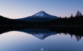 Картинка небо, деревья, озеро, отражение, гора, USA, Oregon
