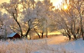 Картинка зима, дорога, солнце, снег, деревья, закат, дом