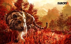 Картинка трава, тигр, хищник, tiger, крадется, far cry 4, companion