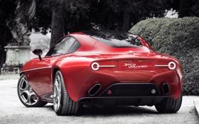 Картинка машина, Alfa Romeo, задок, Touring, выхлопы, Disco Volante
