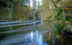 Картинка осень, лес, деревья, мост, пруд, парк, река