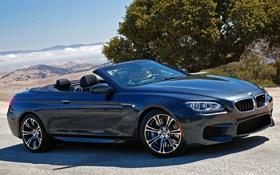Картинка машина, авто, обои, BMW, кабриолет, Cabrio