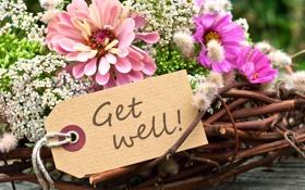 Обои цветы, букет, flowers, get well