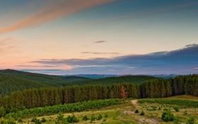 Картинка лес, небо, облака, пейзаж, горы, природа, обои