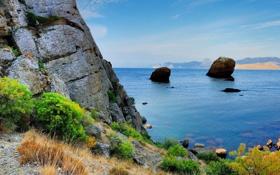 Обои камни, Крым, море, скала, берег, кусты, Черное