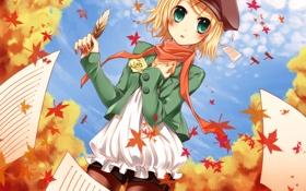 Картинка осень, листья, бумага, перо, шорты, роза, шарф