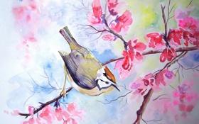 Картинка дерево, птица, акварель