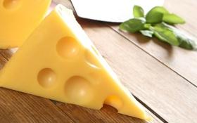 Обои сыр, cheese, маасдам, maasdam