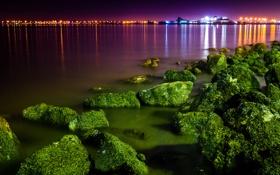 Картинка водоросли, ночь, город, огни, камни, порт, залив