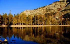 Картинка небо, вода, деревья, пейзаж, горы, природа, озеро