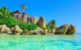 Обои тропики, ocean, sea, пляж, palm, солнце, океан