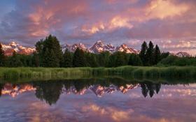 Картинка лето, горы, отражение, утро, США, штат Вайоминг, Национальный парк Гранд-Титон
