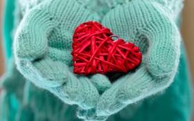Обои зима, любовь, сердце, руки, love, heart, winter