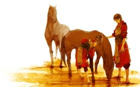 Картинка кони, аниме, купание, арт, двое