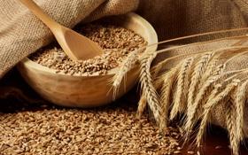 Картинка пшеница, зерно, колоски, колосья, плошки